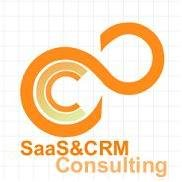 SaaS&CRM Consulting