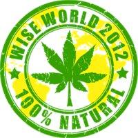 Wise World 2012
