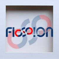 Fission Infotech