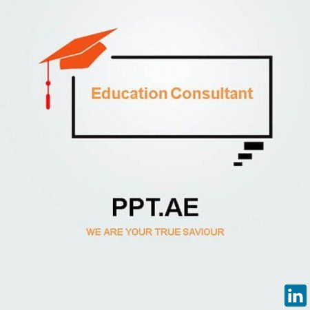 Professional PPT Designer