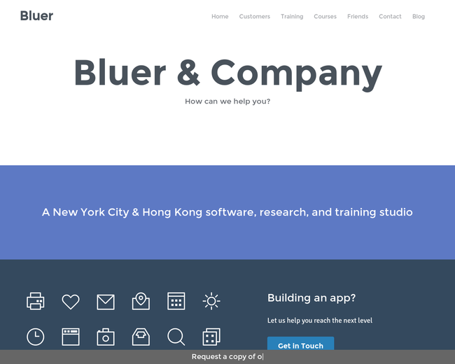 Bluer & Company