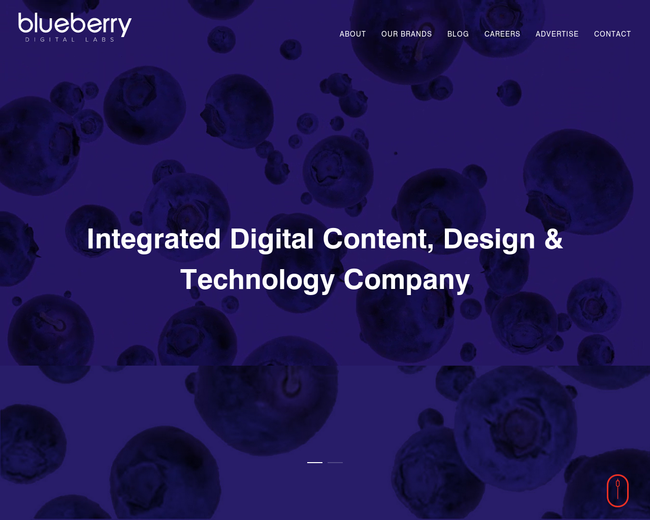 Blueberry Labs