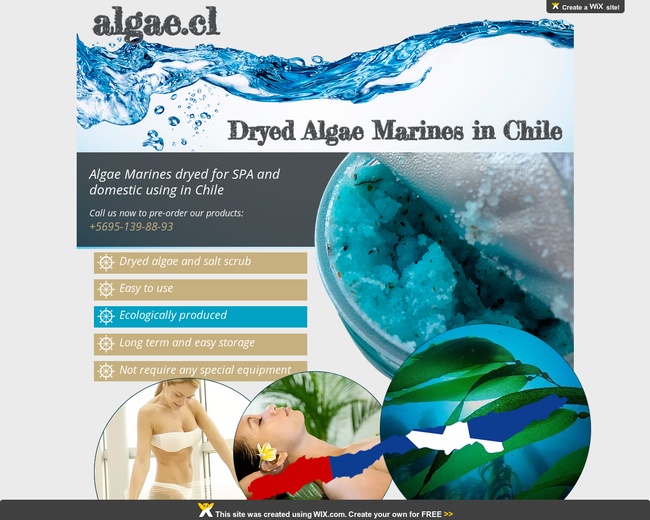 Algae.cl