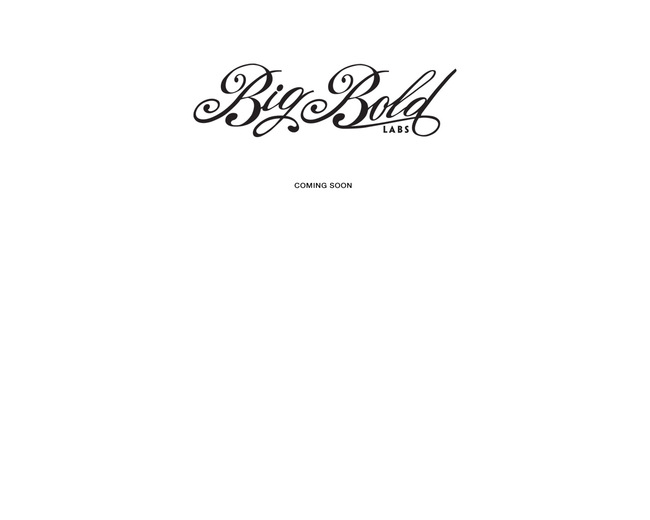 Big Bold Labs