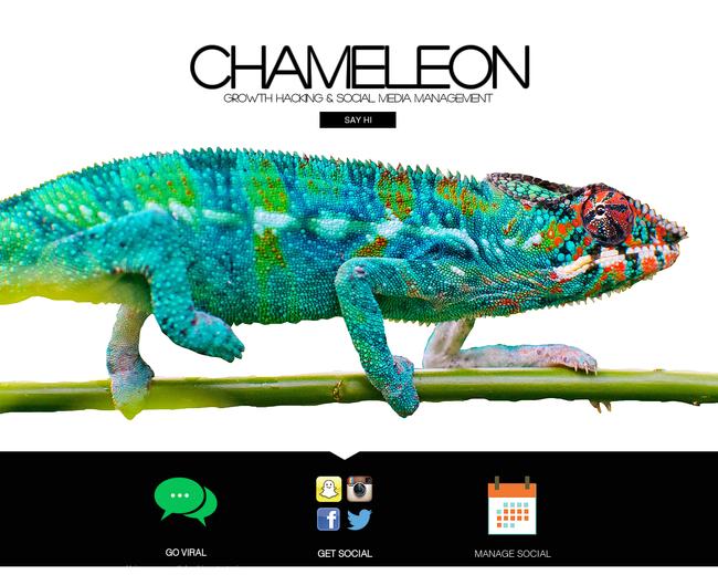 Chameleon.LA