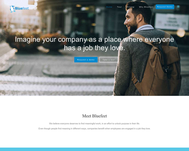 Bluefeet Software