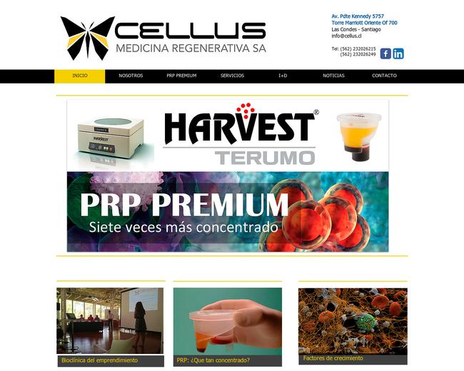 Cellus Medicina Regenerativa