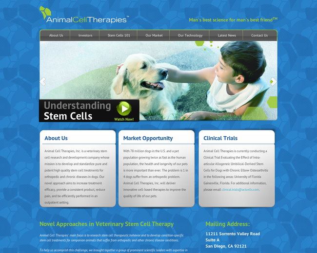 Animal Cell Therapies