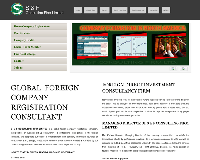 S & F CONSULTING FIRM