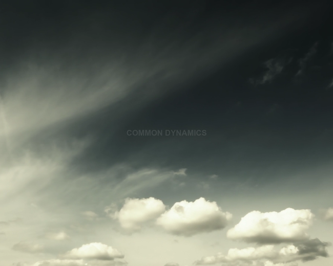 Common Dynamics
