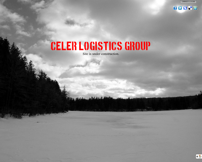 Celer Logistics Group