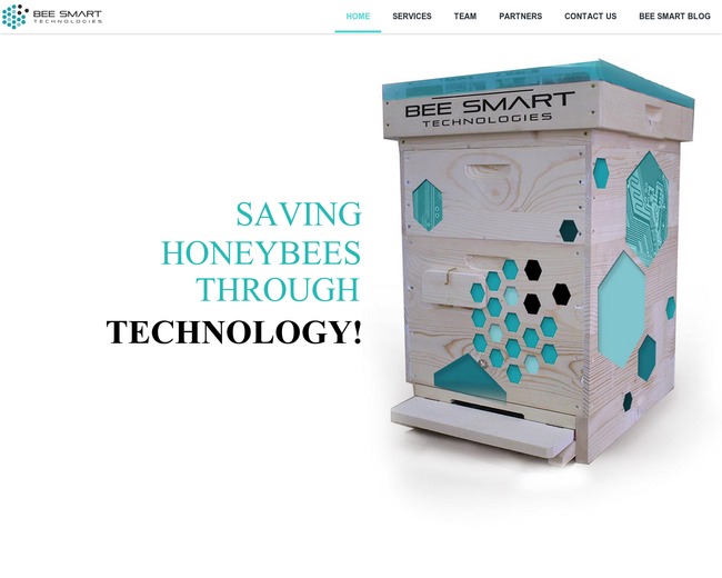 Bee Smart Technologies
