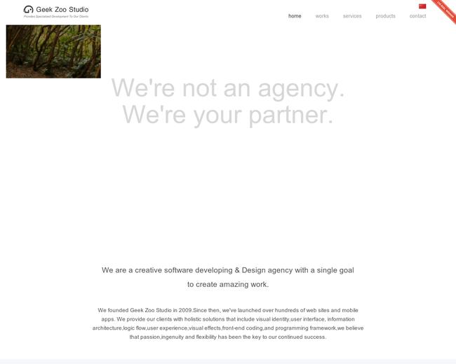 Geek-Zoo Web Development