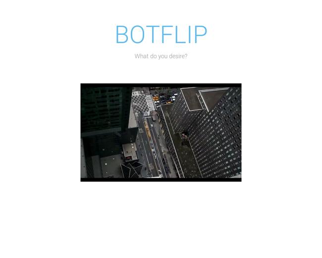 Botflip