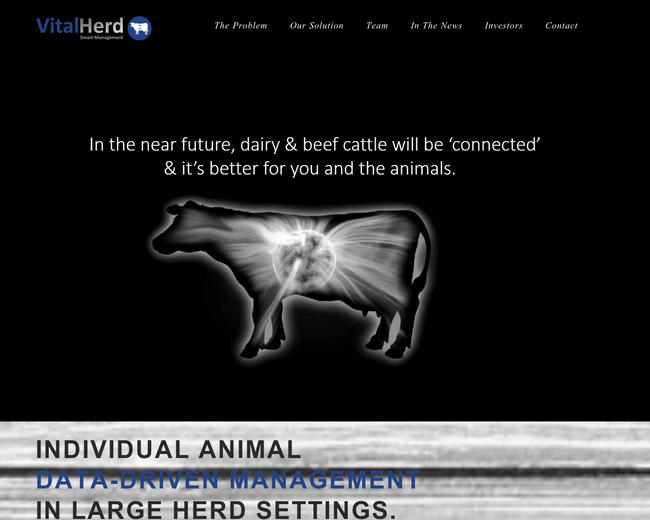 Vital Herd